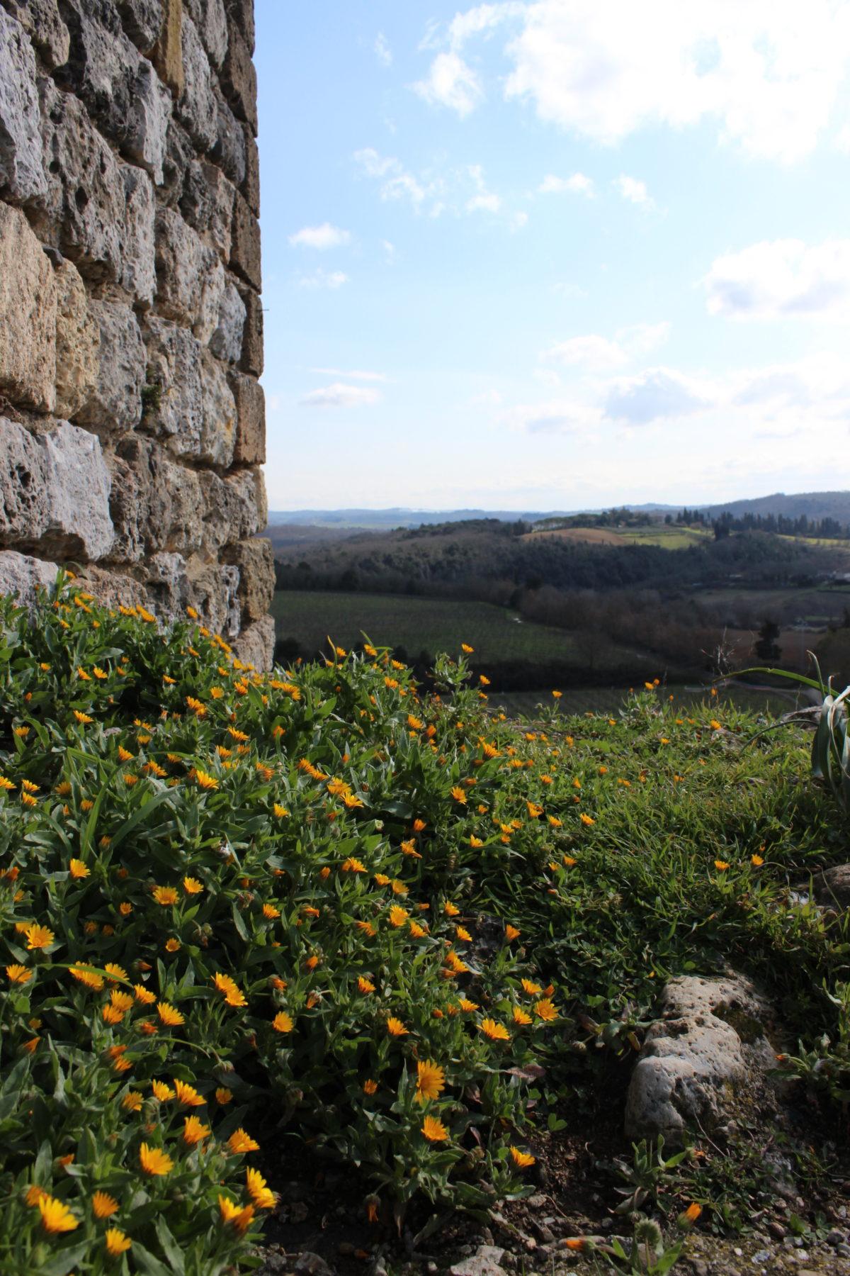Monteriggioni's walls