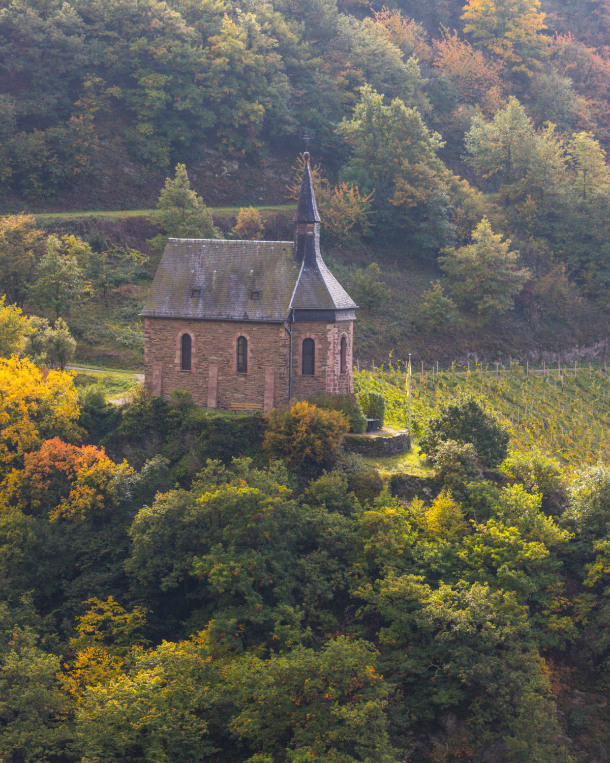 Clemenskapelle - not a castle but still, another small Rheingau gem