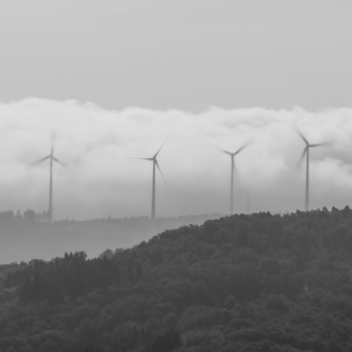 Windmills on the other riverbank of Rhine.
