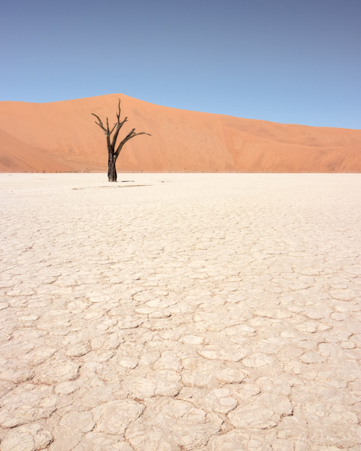 Deadvlei is full of compositions. No easy job, though!