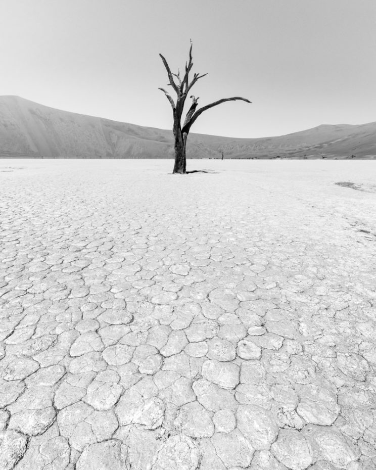 Patterns are something to look for in Deadvlei.