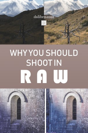 pin why you should shoot in raw pinterest