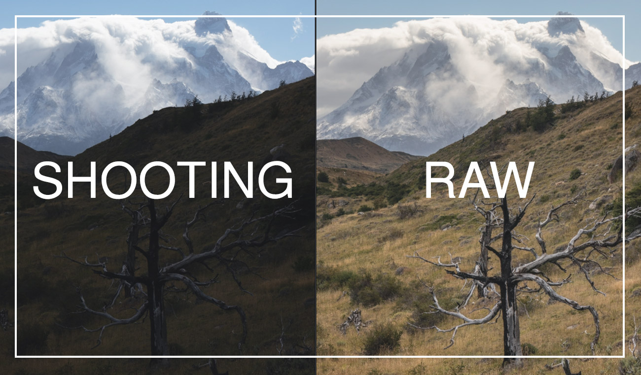 Why you should shoot in RAW format (and why you shouldn't)