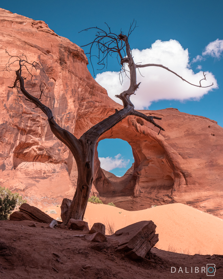 Ear of the wind, one of many beautiful arches in the Monument Valley Park.