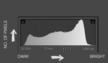 Lightroom histogram showing the distrubution of brightness in an image