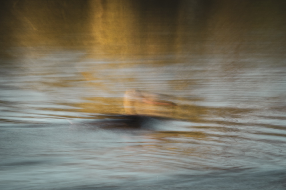 Duck: Another combination of longer shutter speed, a moving subject and light camera wiggle/panning. Add the autumnal colours and you'll get a very happy me. I like very much the impressionist almost painting-like quality here! Canon 80D