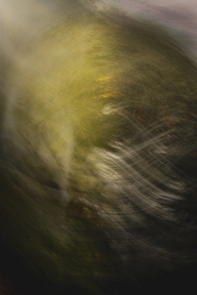 Monsterball: Rotating is a cool impressionist camera movement technique. If you look very closely, you'll be able to see some details of the location - like leaves of the willow I photographed, and even a bit of the horizon in the upper right corner.